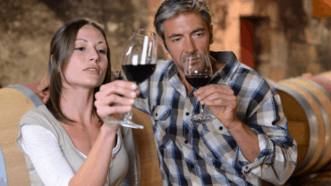 Comprehensive Wine Guide