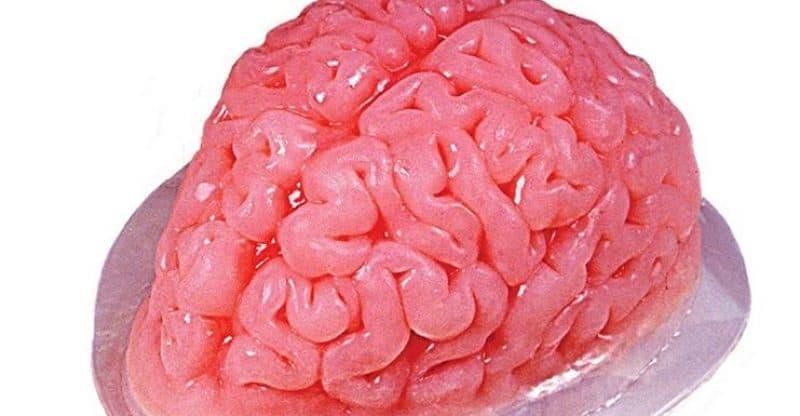 Brain Gelatin Mold